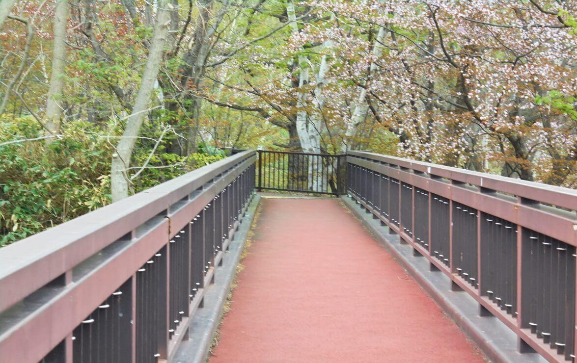 旭山記念公園つり橋