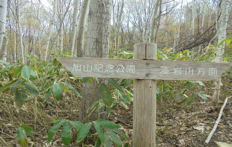 藻岩山ルート