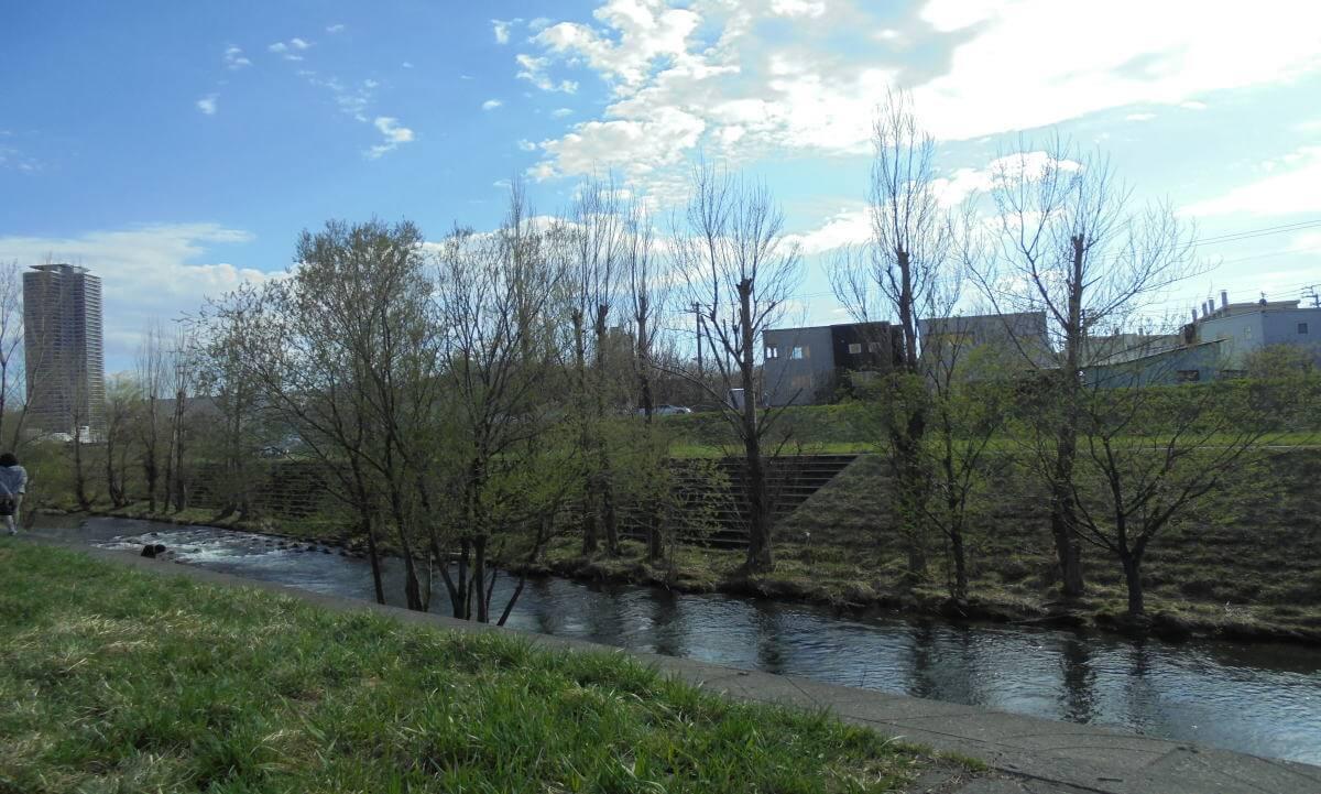 農試公園の川